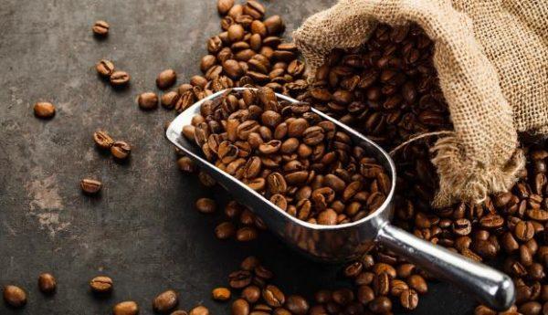 café et caféine