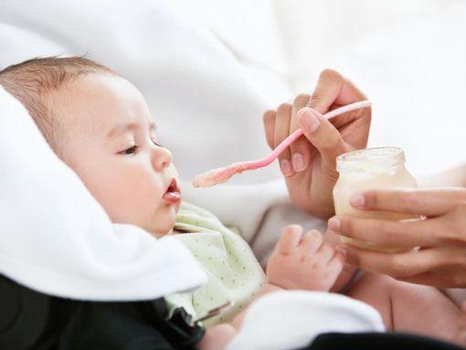 bebe alimentation